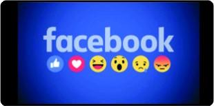 SBG no Facebook